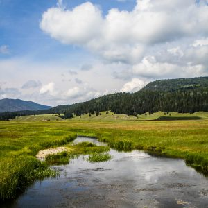 Valles Caldera in New Mexico