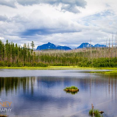 Howe Lake with bare pine trees on a cloudy day in Glacier National Park, Montana