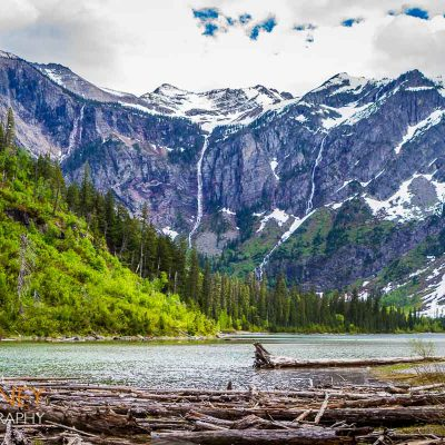 Avalanche Lake with logs on a cloudy spring day in Glacier National Park, Montana