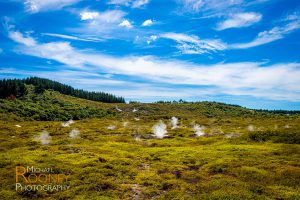 craters moon park taupo new zealand