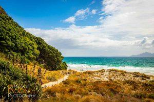 mangawhai heads beach new zealand