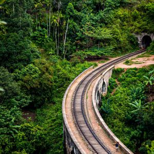 The Nine Arch Bridge and tunnel for the railroad viewed from above in Ella, Sri Lanka
