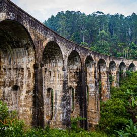 nine arch bridge railway viaduct ella sri lanka