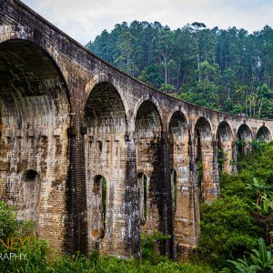 The Nine Arch Bridge (railway viaduct) viewed from below in Ella, Sri Lanka