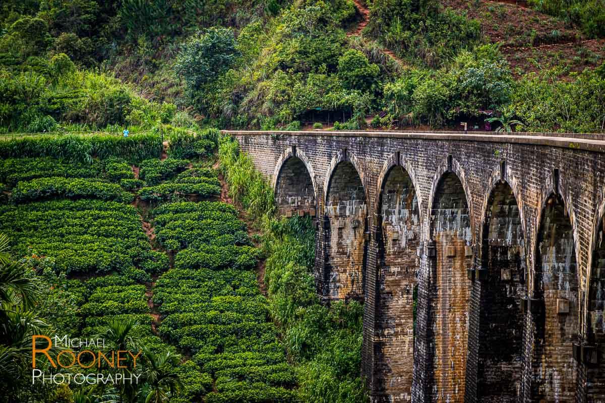 nine arch bridge ella sri lanka tea train tea hill railroad